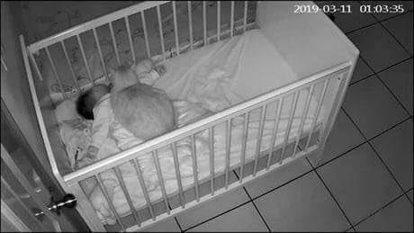 深夜に設置したカメラを見てみると