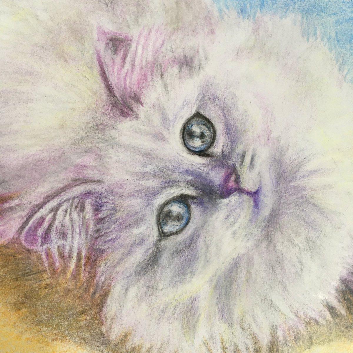 今日もまたまた猫ちゃん描いてみました。ゴロンと横になるふかふかねこちゃん(^-^)#猫好き #ネコ #イラスト #イラスト練習中 #猫好きさんと繋がりたい #イラスト好きさんと繋がりたい#illustration #cats #アナログ #鉛筆 #色鉛筆 #お絵描き #みんなで楽しむTwitter展覧会