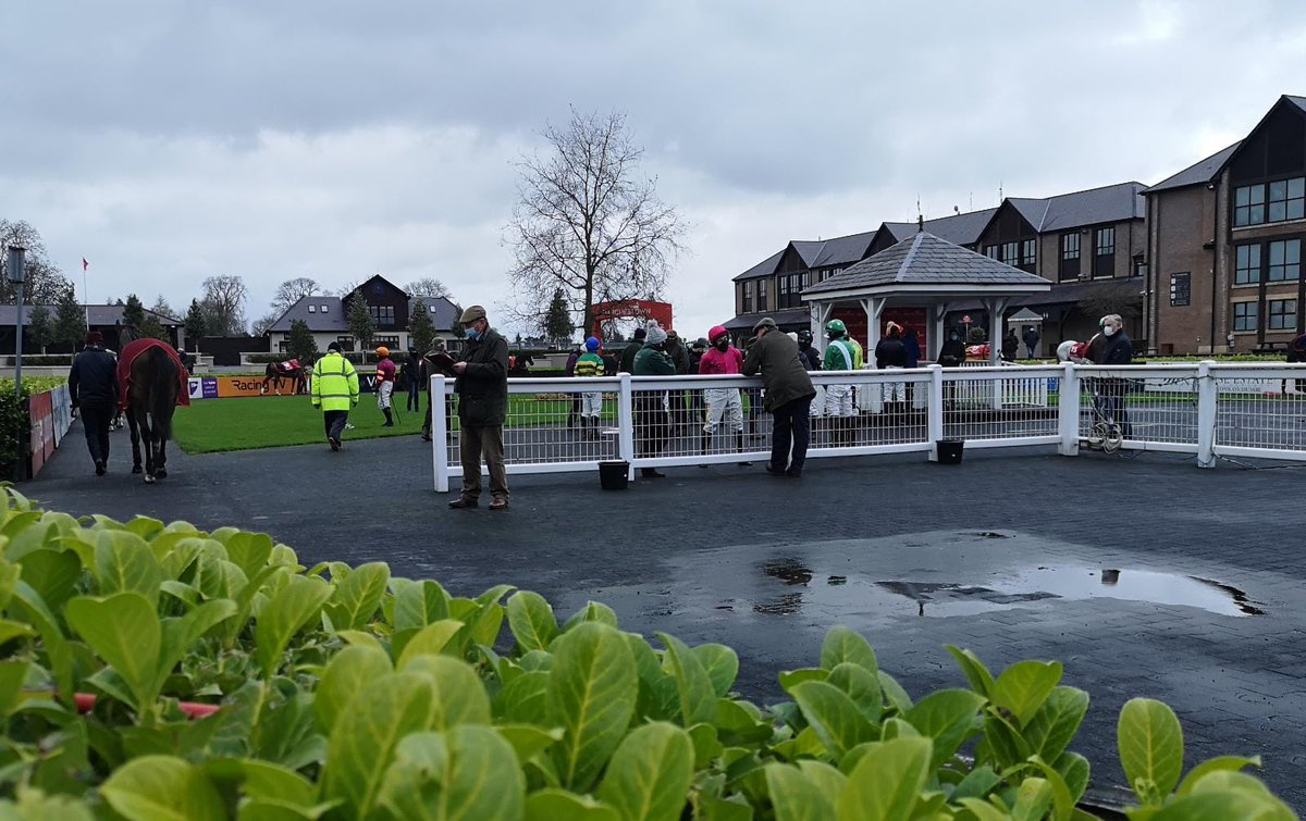 test Twitter Media - We're all set for the first @punchestownrace - watch it all on @RacingTV https://t.co/tdK7uLhpT5