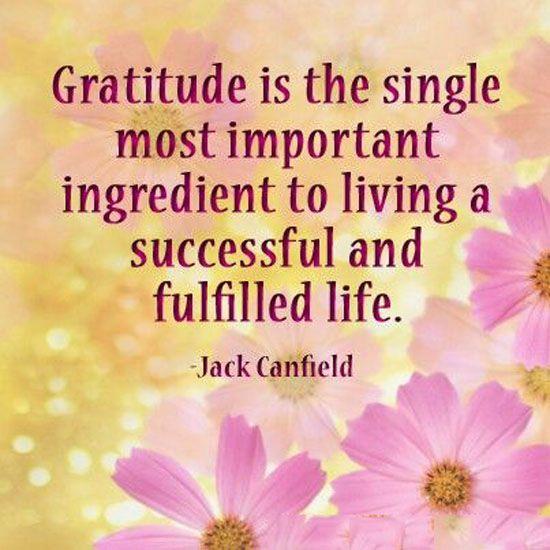 Gratitude ✝️💙☮️☯️#UnityMilwaukee  #gratitude  #Tuesday #tuesdayvibes #TuesdayThoughts #TuesdayMotivation #TuesdayMorning  #Knowing #Peace #optimistic #Smile  #kindness #Change #Progress #BeKind  #GOD #Blessed #Jesus #Thankful #Love #Happy #LoveYourself #Progress #family