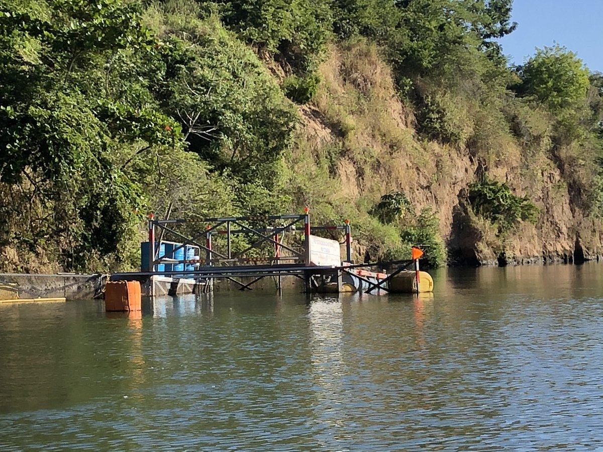 Esta mañana en la jaula flotante Kayam en el Río Jamapa recolectando desechos que estarían contaminando las playas y océanos porque está a 8km de distancia.   ¡Sorprendente lo que baja de las montañas, seamos conscientes de nuestros hábitos de consumo!   #GlobalGoals #ODS14 🌍💕