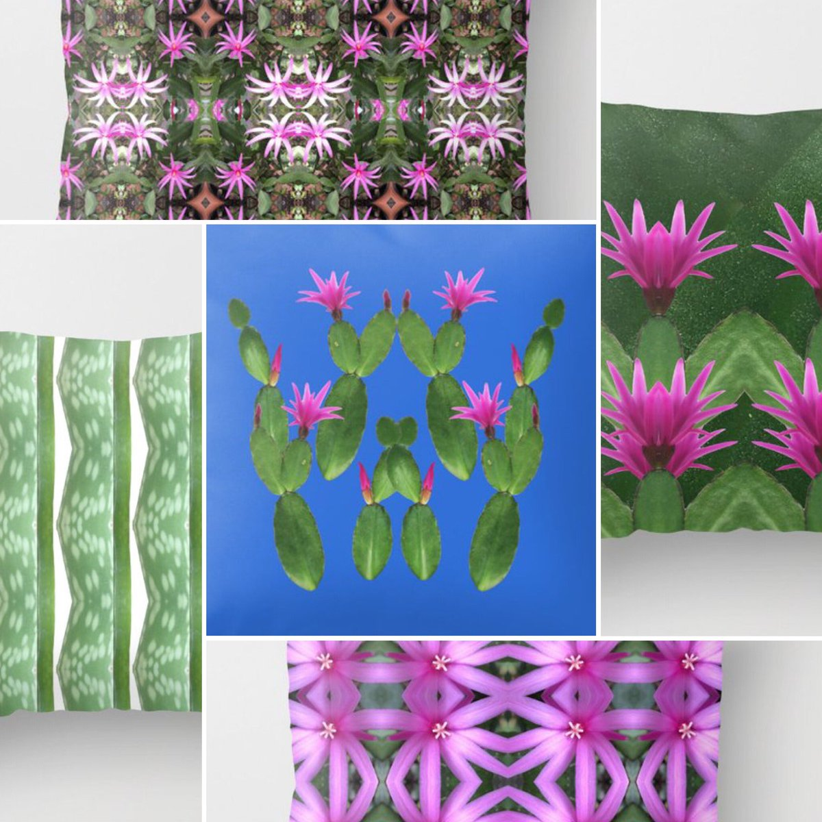 Christmas Cactus Collection  https://t.co/TTz9SpyR85 #colorfulhome #homedecor #Christmas2020 #art #christmasiscoming #photographer #society6 #BlackFriday2020 #BlackFriday #giftideas #holidayseason #shopsmallbusiness #CyberMonday #artistsontwitter https://t.co/s2zcM65Ao3