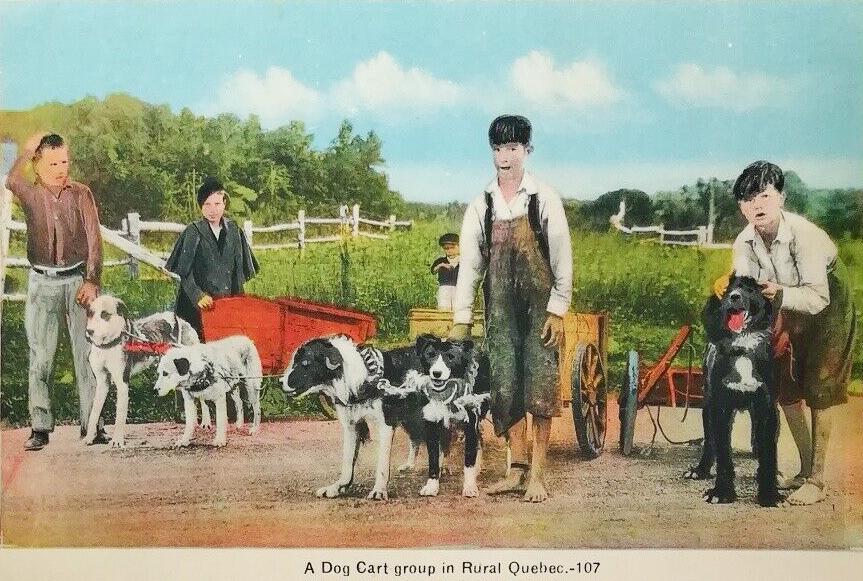 Premier prix dans la catégorie Bizarenostie. Personnages et gestes disparates. Vêtements de différentes saisons? Coloration Warholesque ou quoi? Collage? Vers 1940.  #Québec #Art #rural #chien #dog