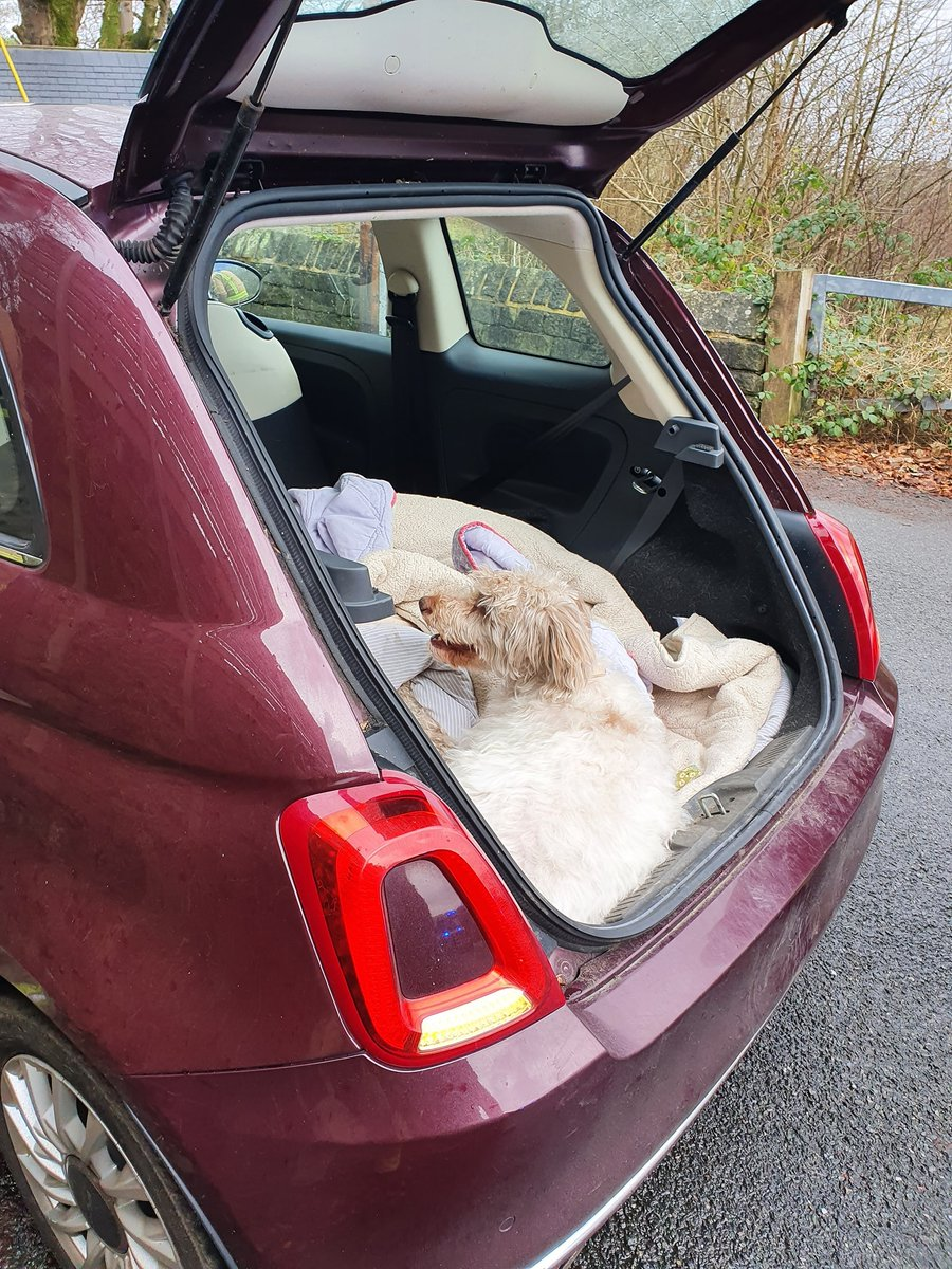 Earlier today, on-call Firefighters from Mytholmroyd helped to release this dog with its paw stuck in a car seat 🐾 Crews managed to quickly free the dog with no harm done! 😁 Pawesome work all!! #NotJustFires