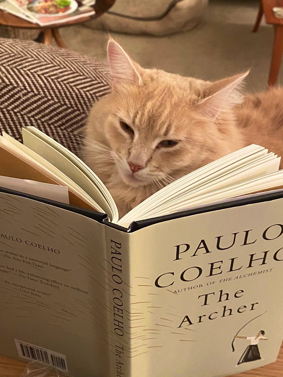 Replying to @RebeccaOrde: I'm not the only one in the house captivated by @paulocoelho 's new book,The Archer.