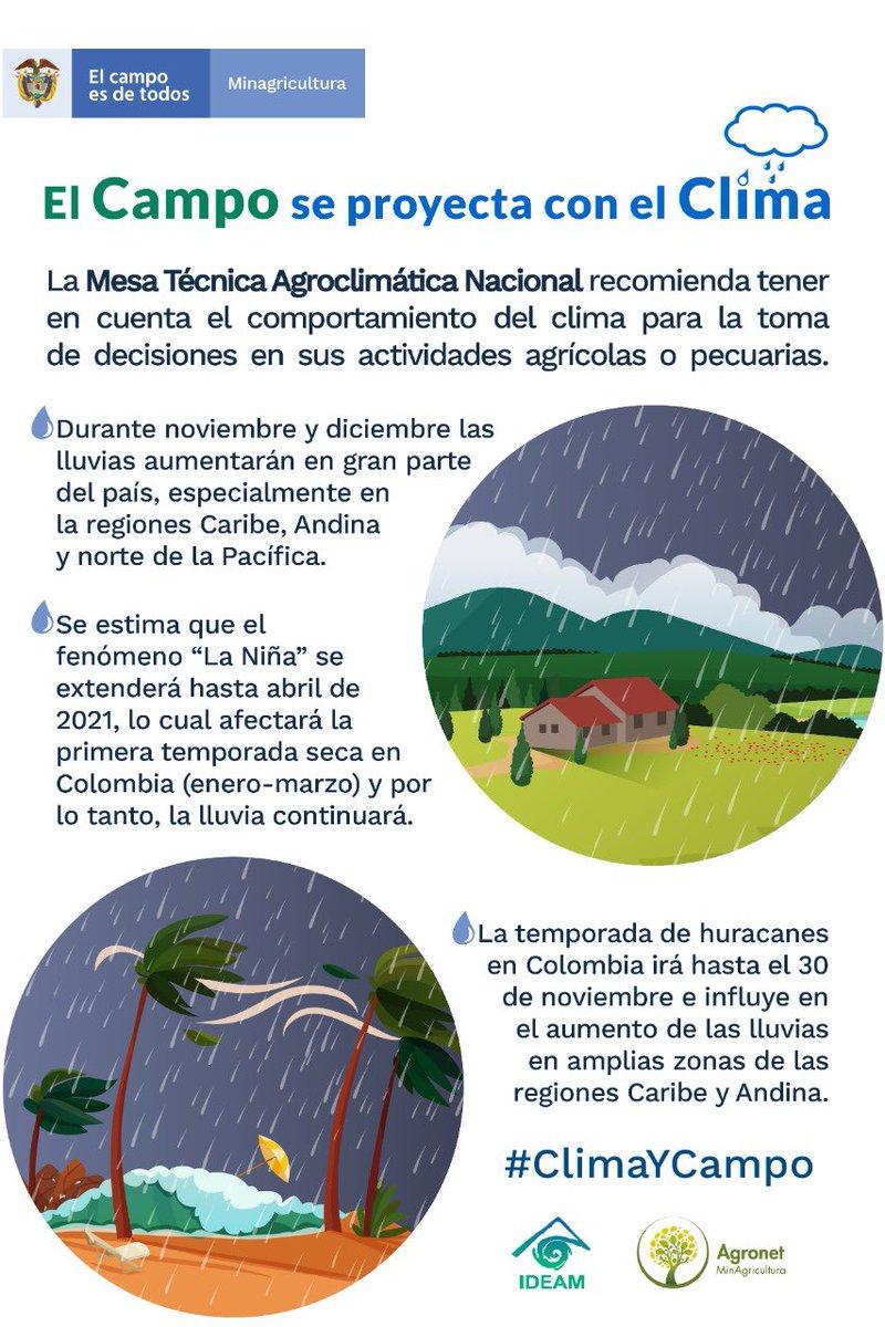Recordamos a los productores tener en cuenta cómo el fenómeno La Niña y los huracanes influyen en el aumento de la lluvia en sus regiones, para proyectar de la mejor forma sus actividades agrícolas o pecuarias.  👉🏼https://t.co/61DYQpuHbH   👉🏼https://t.co/YKjfkqCi0o  #ClimayCampo https://t.co/YcSwSVOb0K