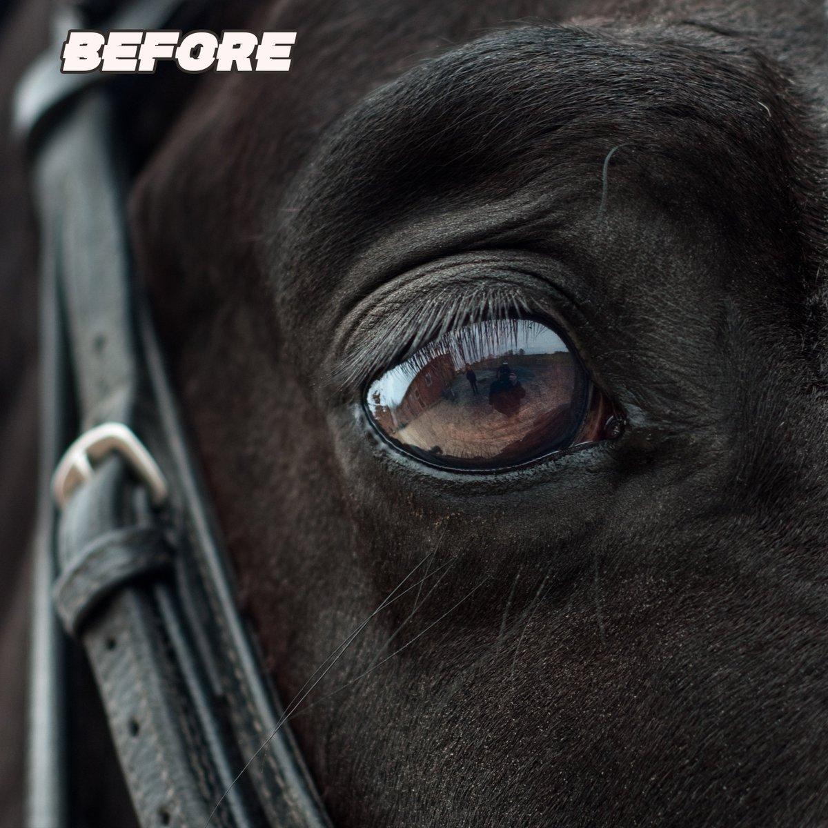 Horse eye 🌌🐴 -----  ------ #photoshopedit #photoshoptouch #photoshop #neon #instadaily #likeforlikes #love #instalove #glow #eyes #art #creative #addiction #fire #ads #space #photography #photooftheday #lightroom #vsco #picsartedits #picsart #horse