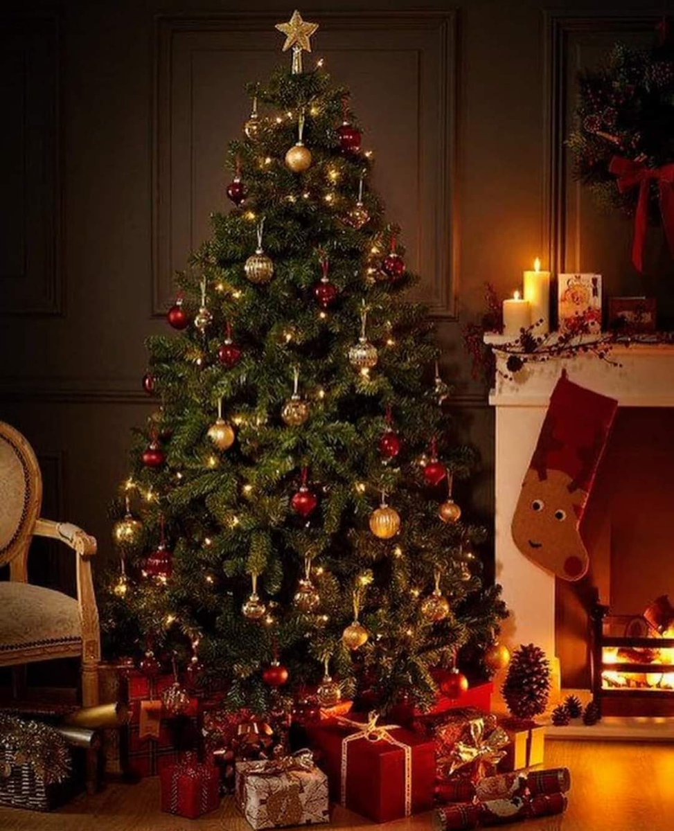 El Nadal 🎅🏻 Una de les èpoques de l'any 🎁 que més m'agraden 🎄 #nadal #bonnadal #navidad #felznavidad #christmas #merrychristmas #merrychristmas2020 #ChristmasTree #christmaswindow #santaclaus #Christmass #christmascake #christmascakes  #mardelplatalimousines @elcorteingles https://t.co/tpAh3FtsNY