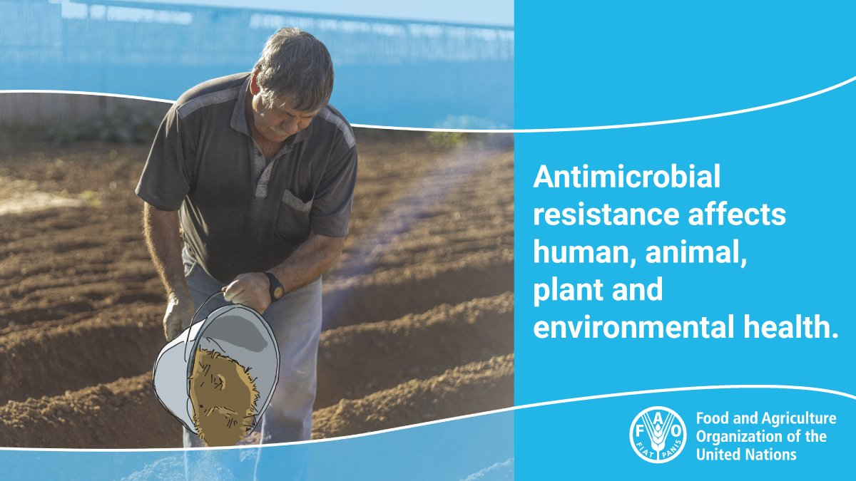 Antimicrobial resistant microbes are already here and all around us. They are in the #food we eat, the #water we drink and the #soil in which we grow our crops. #WAAW2020 #AntimicrobialResistance  https://t.co/oM611YJGRn https://t.co/LwAmqt59ov