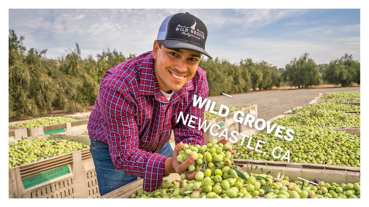 In #NorthernCalifornia, Dewey Lucero started @WildGrovesEVOO in 2015, making olive oil from 100-year-old olive trees on his family's farm that they've owned for over 4 generations. His loyal customer base connects to his locally grown and family-oriented business.