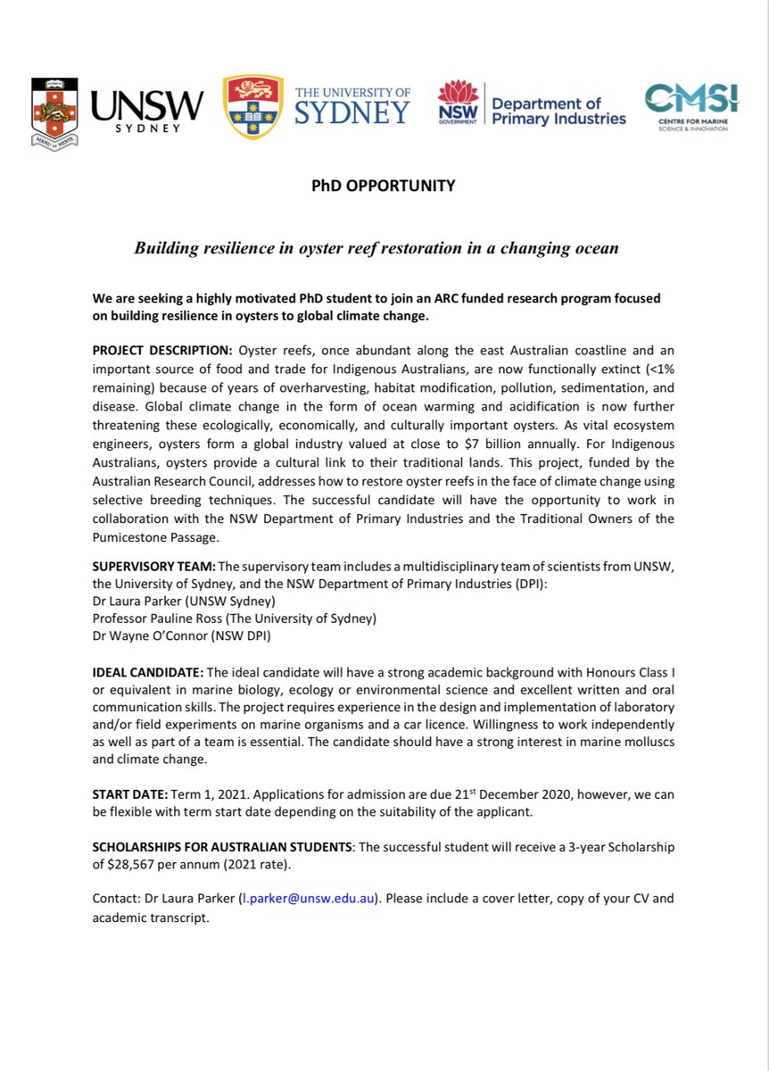 PhD opportunity in oyster reefs and climate change!! 🤩 🦪