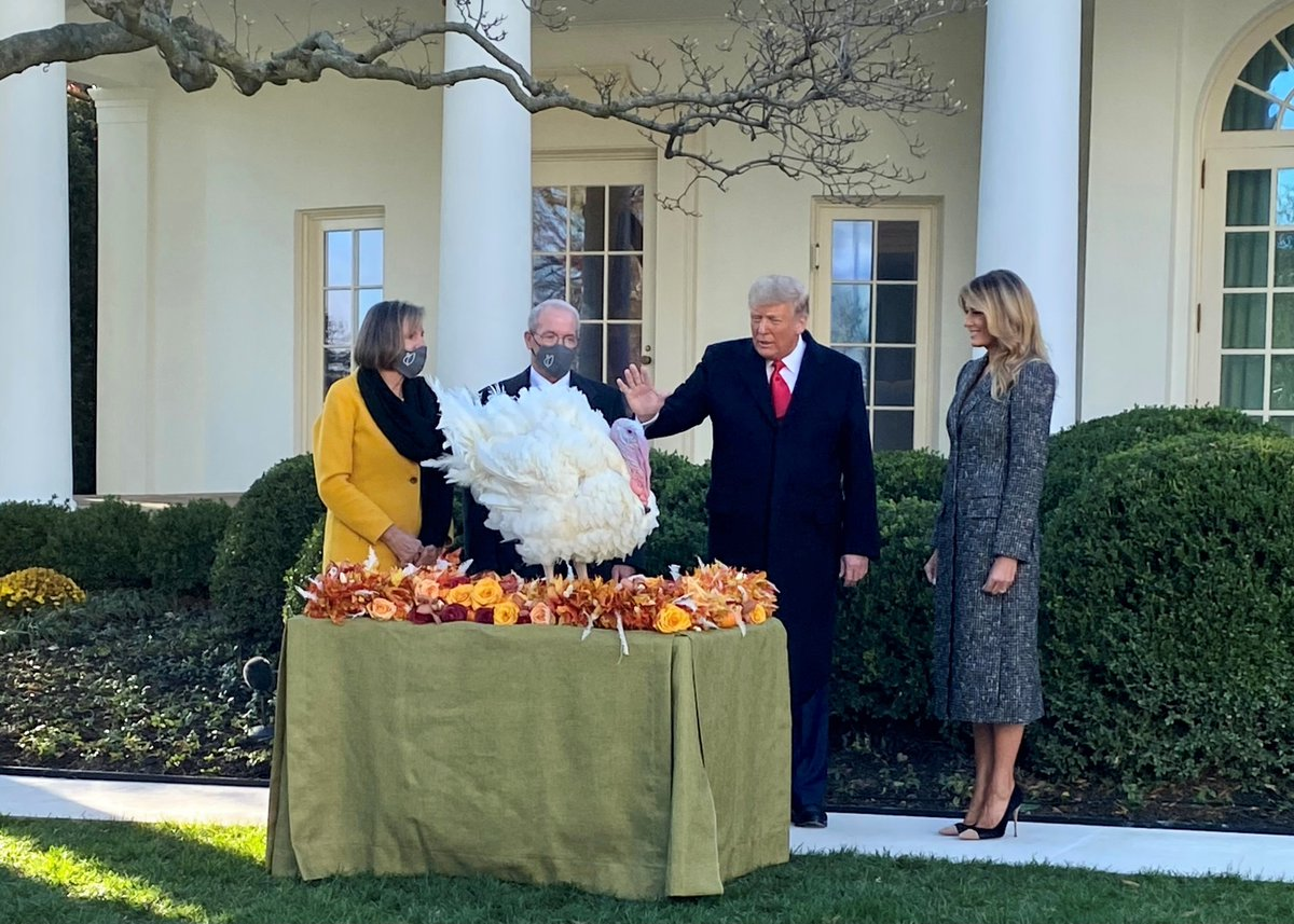Congratulations to Corn🌽, the 2020 National Thanksgiving Turkey! NTF Chairman Ron Kardel and his family were honored to join President Trump and the First Lady at the @WhiteHouse today to carry on this beloved tradition celebrating Thanksgiving.