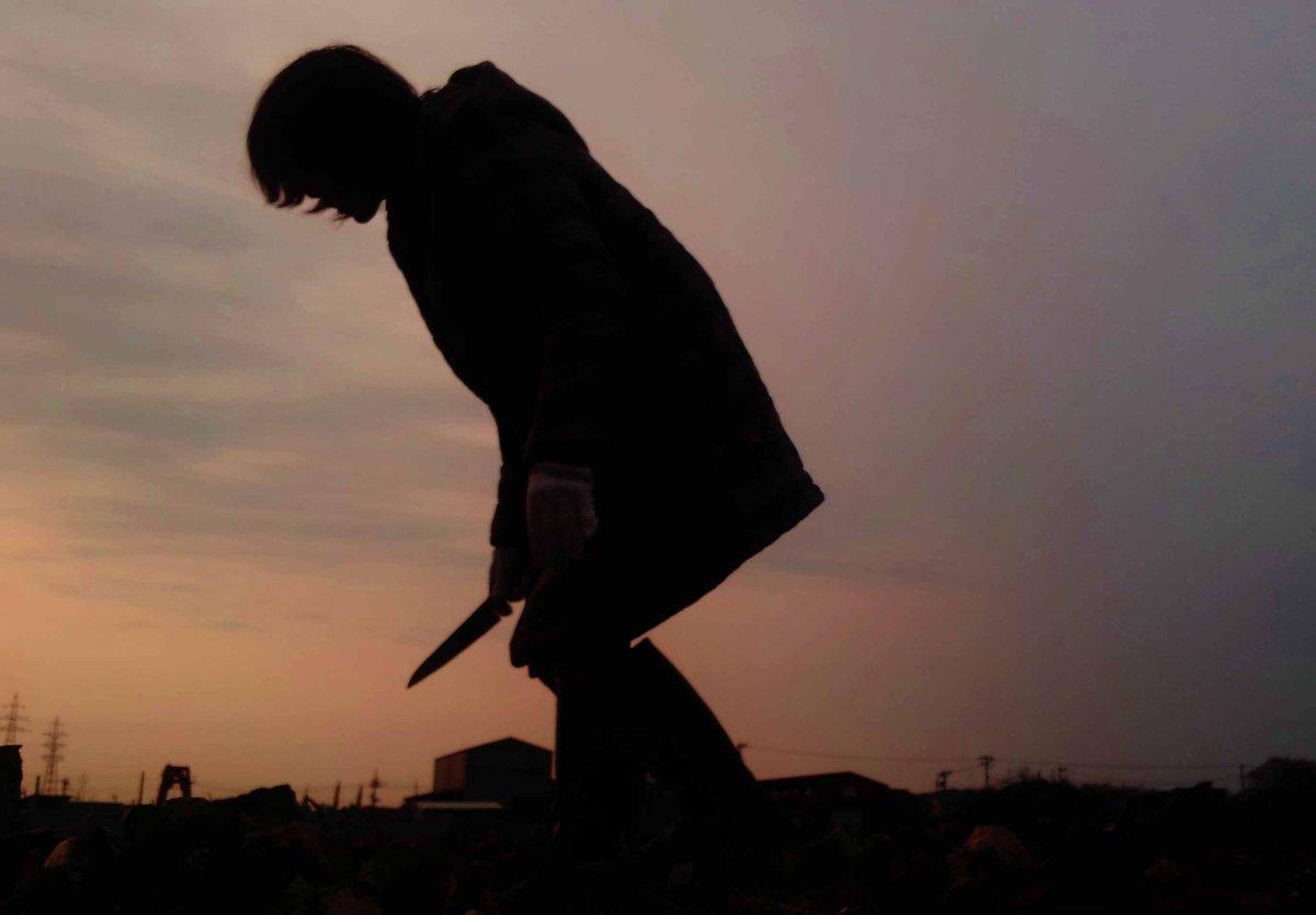 奥さんがうちで食う大根を収穫しているだけなのにヤバい現場になった写真(再掲) #全日本失敗写真協会