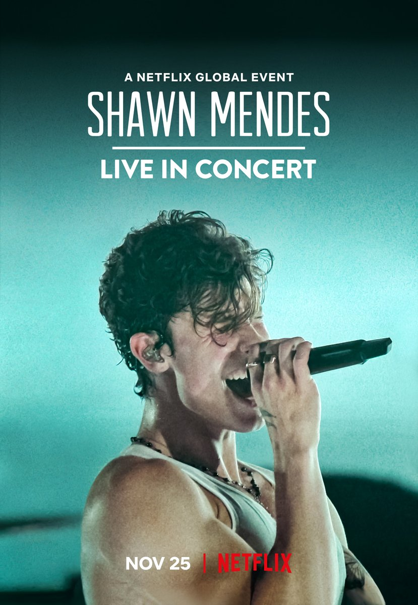 @ShawnMendes's photo on #LiveInConcert