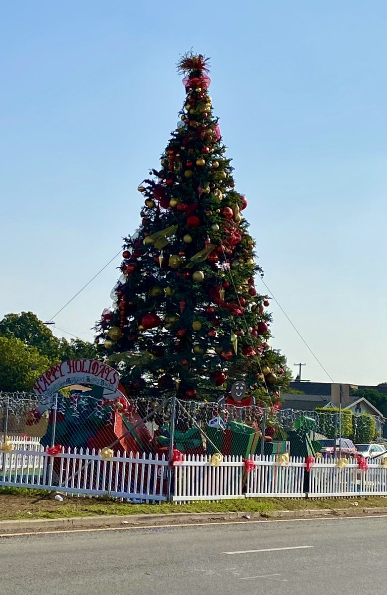 Even the Christmas tree in South Los Angeles looks more robust & attractive than the tree at the world renowned Rockefeller Center 😄🎄 #ChristmasIsComing https://t.co/bn6mbrrONy