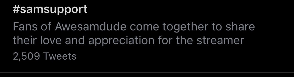 🥺💕 i really hope they all know we appreciate and support them!! { these also have been taken over a past week } #Samsupport #punzappreciation #quackitysupport #zaksupport