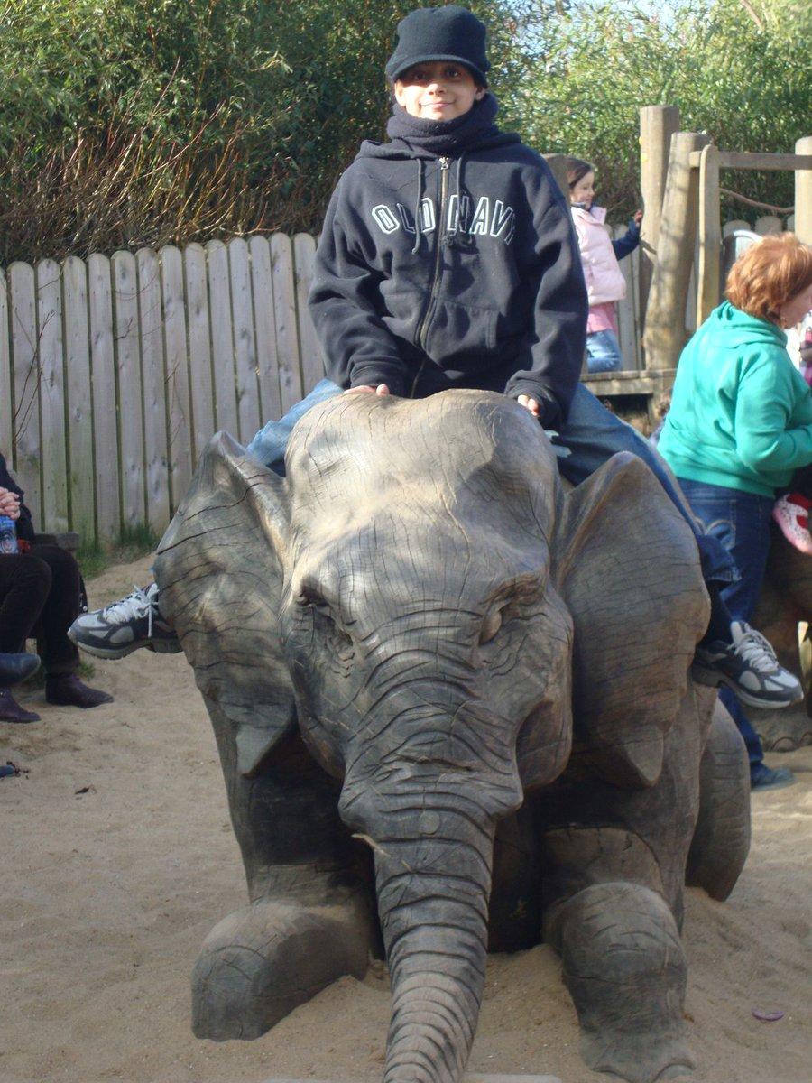 Dublin Zoo. Really miss going to the zoo #elephanttamer #whenhewaslittle https://t.co/p2tvyiqMJ6