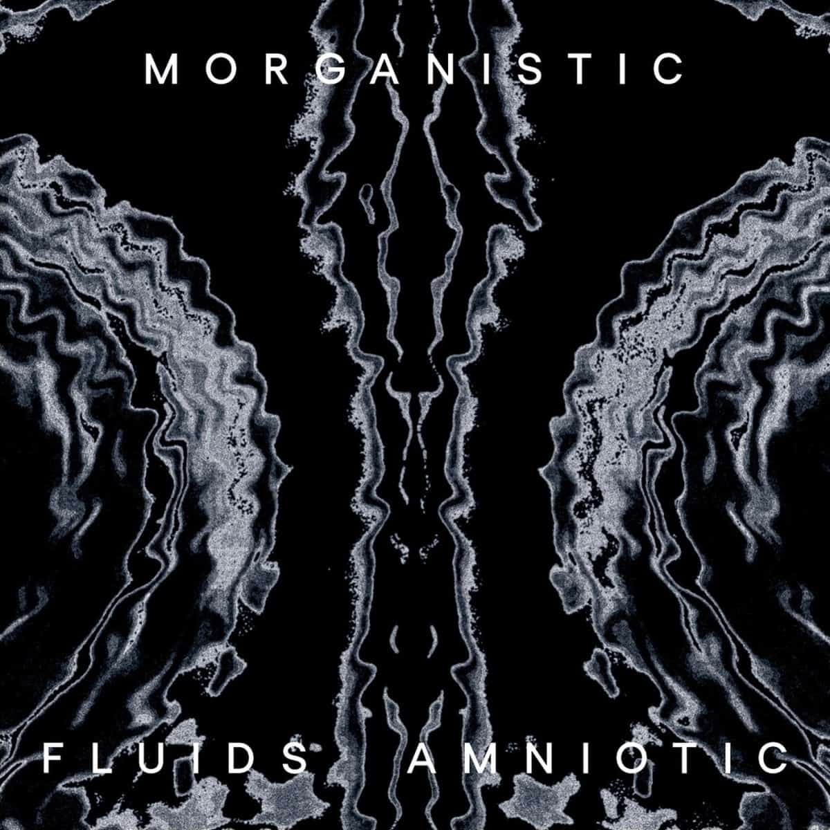 JUST IN: Fluids Amniotic by Morganistic Remastered reissue of techno producer Luke Slaters only album as Morganistic. normanrecords.com/records/184313…