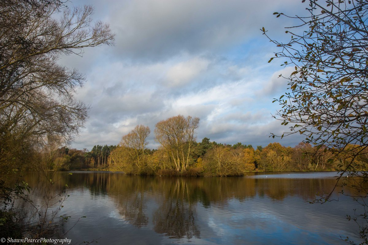 A #beautiful #bike ride out to #WestStow #lake for a #lockdown #walk yesterday! #landscape #nature #photography #photographer #photooftheday #picoftheday #PictureOfTheDay #Autumn @BuryStEdBeyond @suffolk_tourism @Suffolkdays @suffolkmag @DiscoverSuffolk @Eastmagazines https://t.co/aeg8UBb3IZ