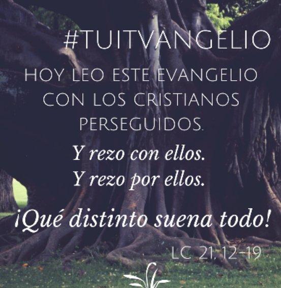 @Pontifex_es #Tuitvangelio   @AyudaIglesNeces @raquelmartinn