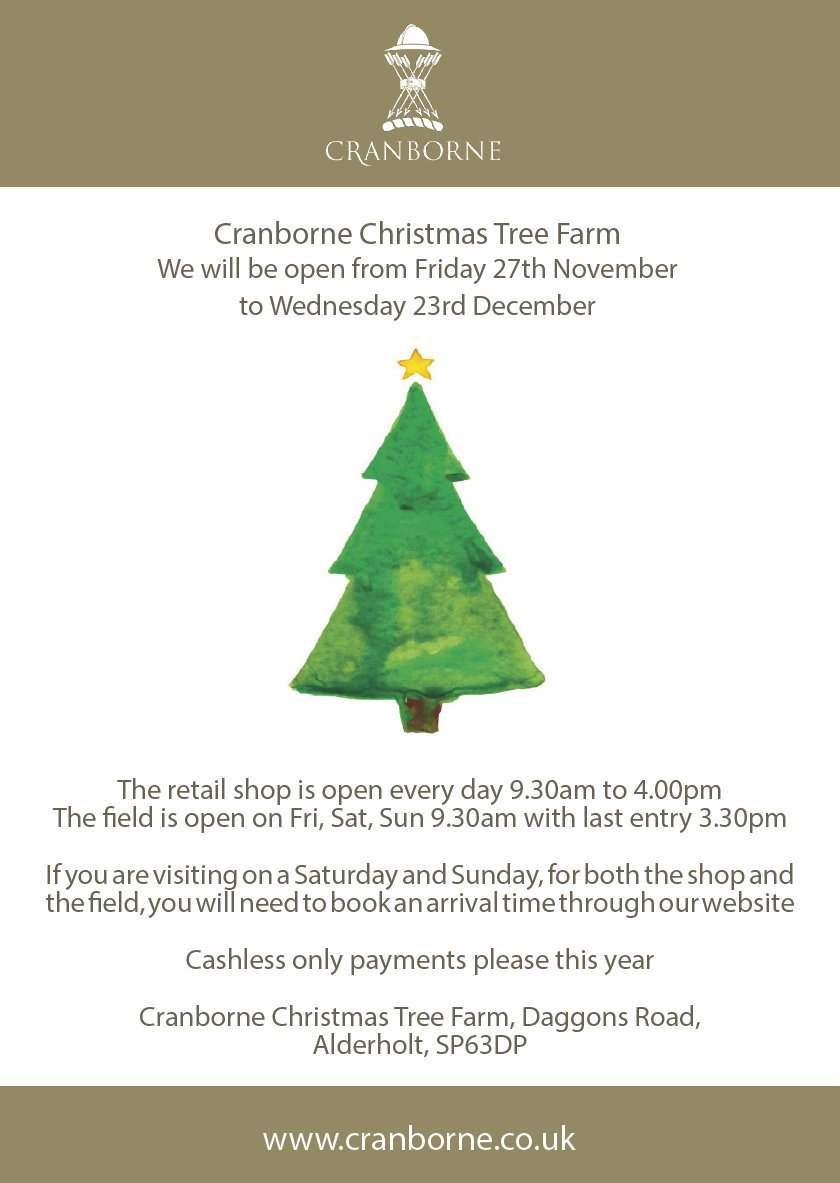 Our Christmas Tree outlet opens this Friday:
