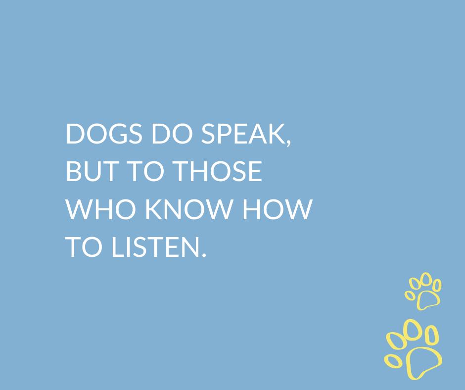 Are you a good listener? • • • #dogjokes #wednesdaywisdom #doglovers #goodlistener