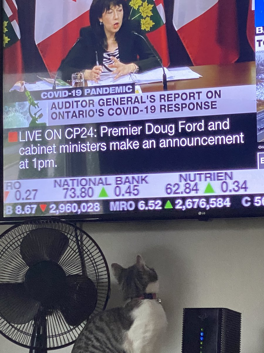 Josie and I are fully invested in this @CP24 #onpoli #COVID19 #COVID19Ontario