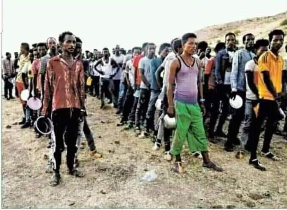 These are refuges in Sudan that flee from Tigray. See all of them are young in their early 20s and that is why we say most of these youths killed thousand of Ethinic Amhara before leaving to Sudan. Demography of refuges is not dominantly young. It's women and children. https://t.co/GuiVpXT9xd