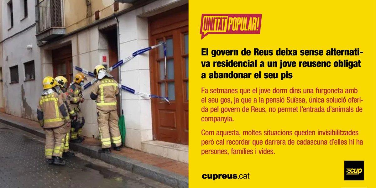 CUPReus photo