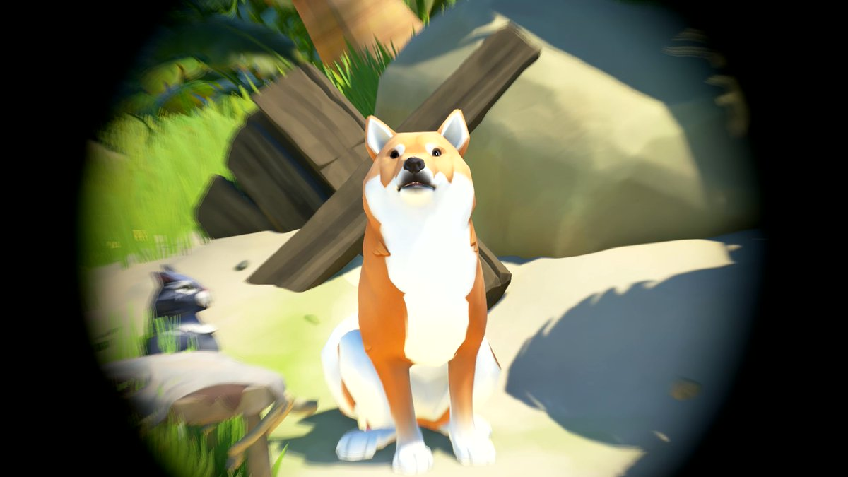 Replying to @SeaOfThieves: This is an appreciation post for this particularly good boy. One like = one treat.