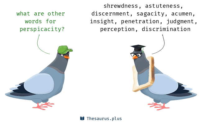 #WordOfTheDay   PERSPICACITY - ability to understand things quickly & make accurate judgments  courtesy of @gypsea1997  #TeamSeal #learningisfun #wednesdaythought   @ExplodingPossum @JillLum1 @Pixieprogrammer @BruceShark5 @chirpykittys @fred7722