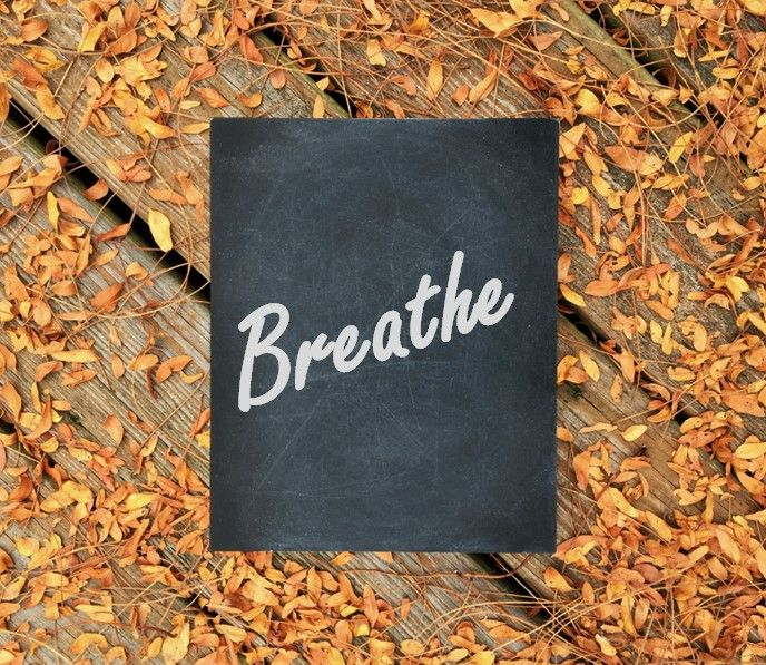 The holidays can be a stressful time any year, but especially during Covid. Get outside in the fresh air. Many meditation apps have free trials- download one and give it a try. Just breathe because being a student and figuring out your future can be stressful. #takeabreak