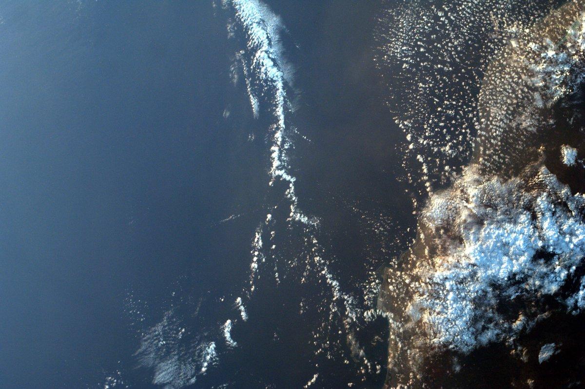 Con una tripulación de siete miembros a bordo de la @Space_Station, los experimentos estaban en plena marcha esta semana.   Echa un vistazo a los primeros momentos de los astronautas de Crew-1 a bordo del laboratorio en órbita. https://t.co/Ko9dYBFPdB https://t.co/vWLNLyfYps