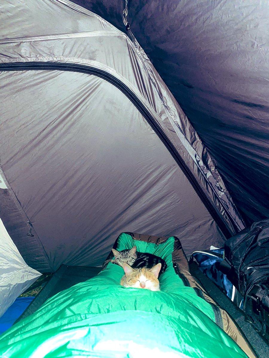 キャンプ場のテントの中で夜中に起きてしまった…なんか足元に重さを感じて怖いなー怖いなーって思ってそっとスマホのカメラで取ったら写っちゃいました