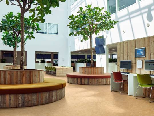 What does Biophilic design mean? And what does it do when applied to a healthcare setting. Read it here:  https://t.co/T359ElPXoz https://t.co/1FG81mg7lf
