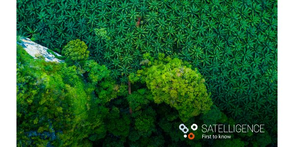 Satelligence raises investment to transform global commodity supply chains and eradicate deforestation #Satelligence #EarthObservation #Deforestation #EnvironmentalImpact #Satellite