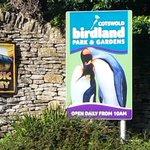 Image for the Tweet beginning: @Birdland_ - another place I