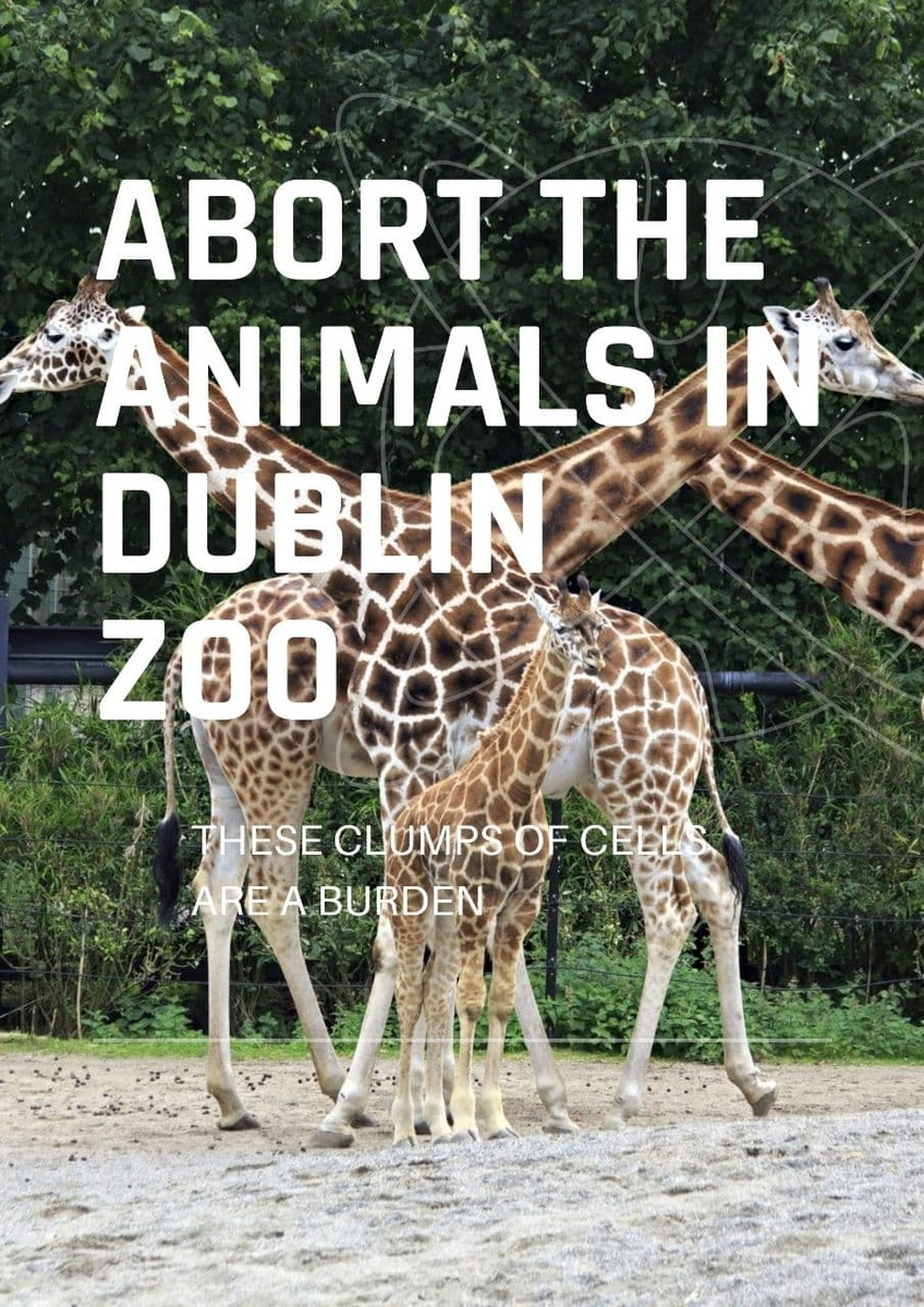 Why do people care so much more about zoo animals than the thousands of Irish babies being liquidated by