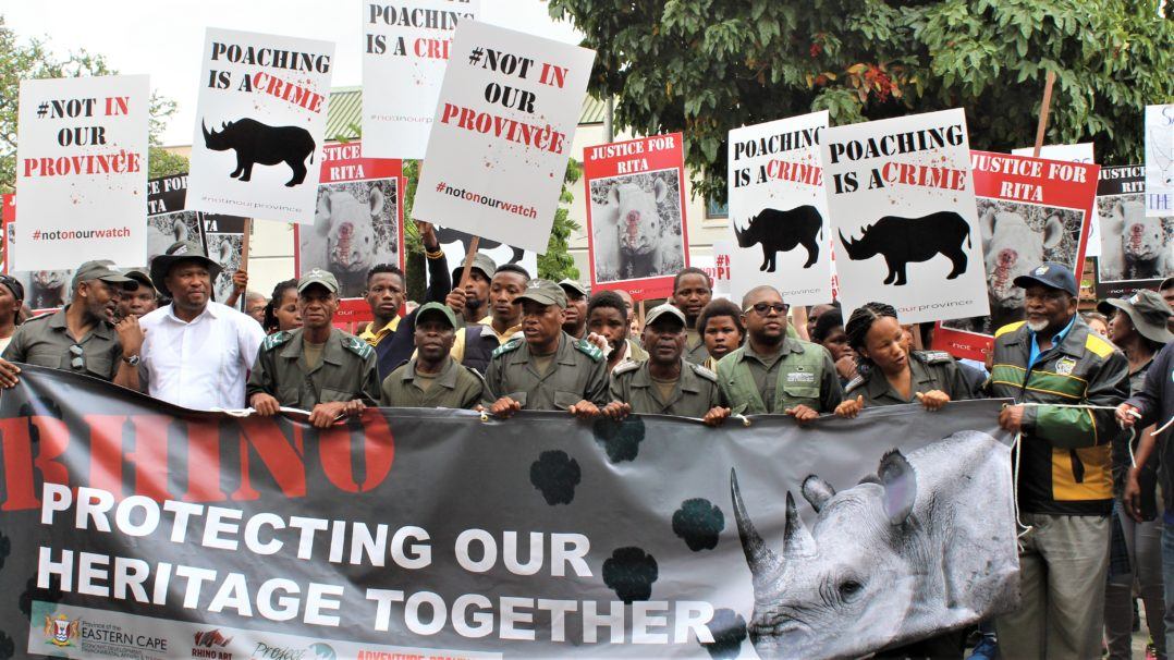 #SouthAfrica #EasternCape Premier pledges continued government support against #poaching in the Province as #Ndlovu #rhino #poaching gang lose appeal #NotInOurProvince zero tolerance for #WildlifeCrime