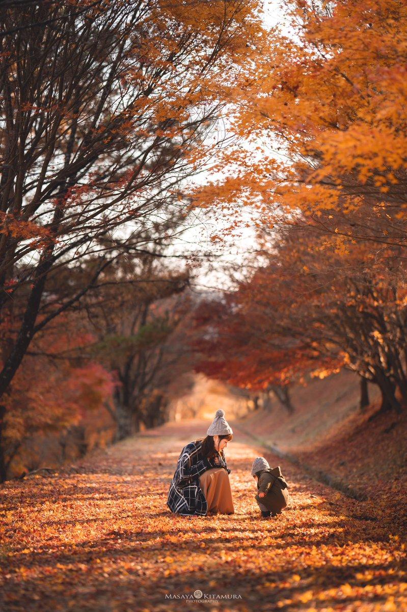 長野の美しい紅葉と家族を撮ったら物語のワンシーンのようだった。