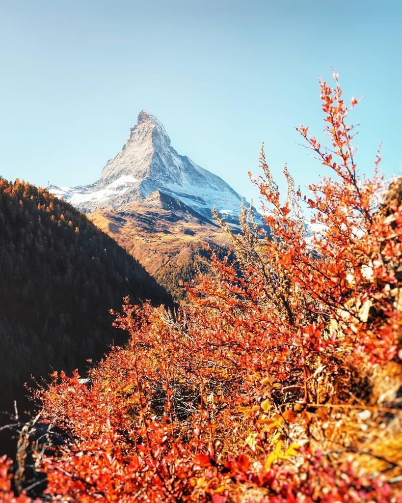 Let's be frank: 2020 was a dumpster fire. Despite the craze, we've been fortunate to stay in #Zermatt this #autumn! One weekend made up for everything else... 🍂🍃  #zermattmatterhorn #matterhorn #valaiswallis