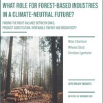 Image for the Tweet beginning: What role for forest-based industries