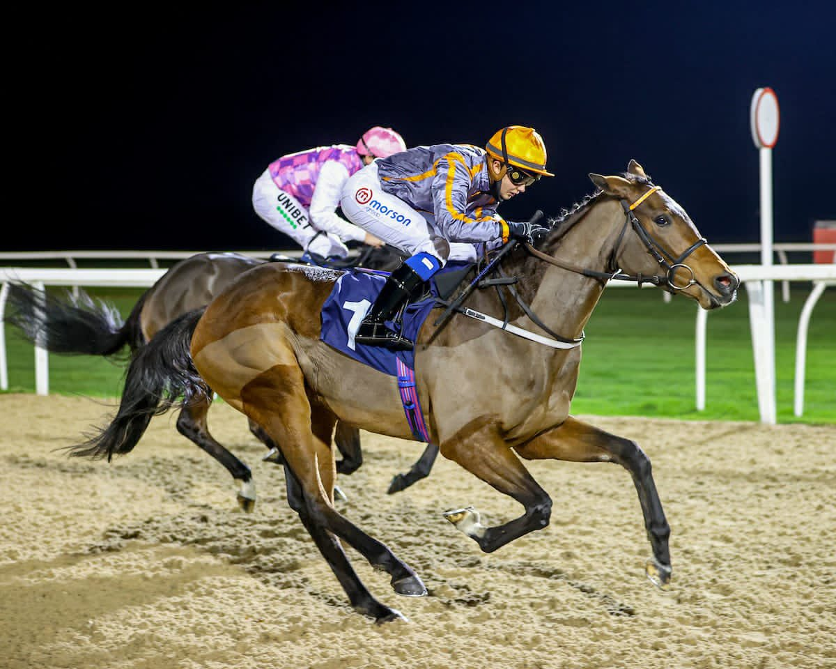We have the @RichardFahey trained Holy Endeavour declared for @WolvesRaces on Saturday. @meg_nicholls11 rides.