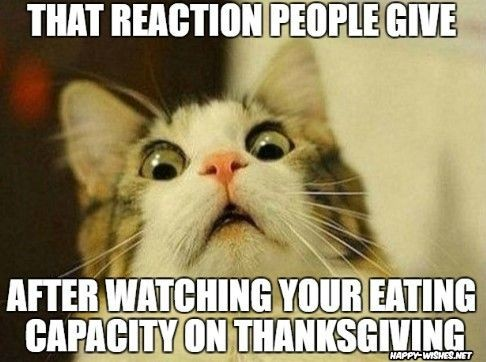 BenzoGaming - Happy Thanksgiving everyone. Spend some time with your friends and family and enjoy this great day! Have a third serving while your at it!