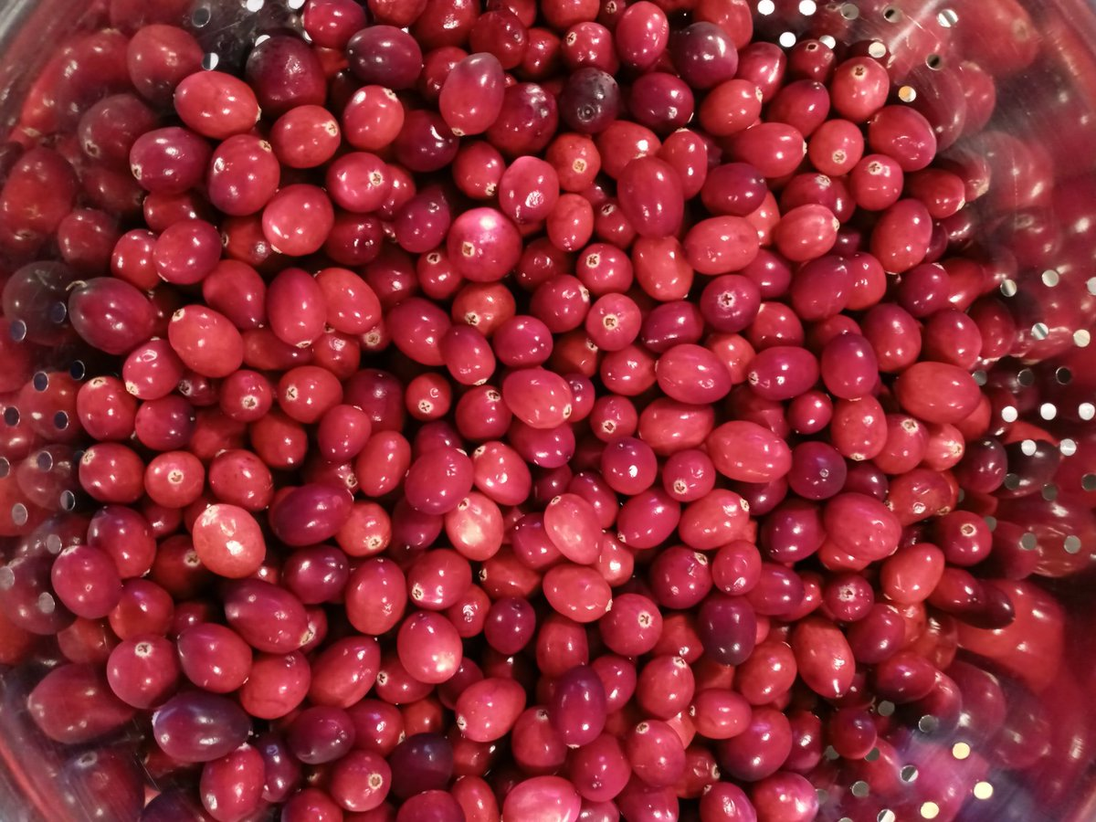 Finger Taints On Twitter 30 Minutes Of Simmering Until Cranberry Sauce It S My Opener Makes The Whole House Smell Like Thanksgiving