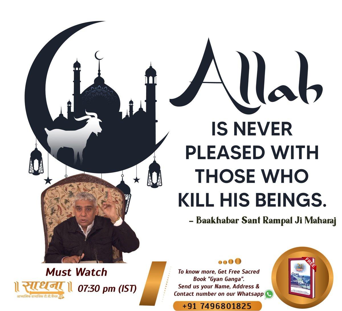 #ThursdayThoughts  #Allah_Prohibits_EatingMeat 𝙄𝙩 𝙞𝙨 𝙤𝙣𝙡𝙮 𝙞𝙜𝙣𝙤𝙧𝙖𝙣𝙩 𝙈𝙪𝙡𝙡𝙖𝙝 𝙆𝙖𝙯𝙞𝙨 𝙬𝙝𝙤 𝙢𝙞𝙨𝙡𝙚𝙙 𝙃𝙤𝙡𝙮 𝙈𝙪𝙨𝙡𝙞𝙢 𝙧𝙚𝙡𝙞𝙜𝙞𝙤𝙣 𝙗𝙮 𝙣𝙤𝙩 𝙨𝙝𝙤𝙬𝙞𝙣𝙜 𝙧𝙚𝙖𝙡 𝙠𝙣𝙤𝙬𝙡𝙚𝙙𝙜𝙚 𝙤𝙛 𝙌𝙪𝙧𝙖𝙣 & 𝙆𝙚𝙚𝙥 𝙖𝙬𝙖𝙮 𝙛𝙧𝙤𝙢 𝙩𝙧𝙪𝙩𝙝.