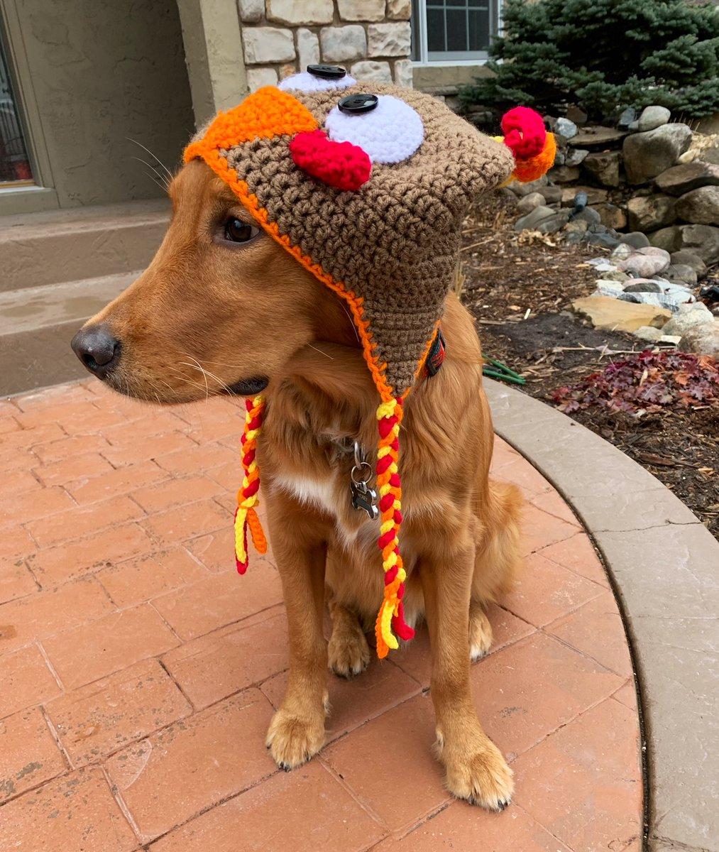 gobble gobble 🦃  it's turkey times!!! happys thanksgiving 😀 https://t.co/Ki6HeNsT0L