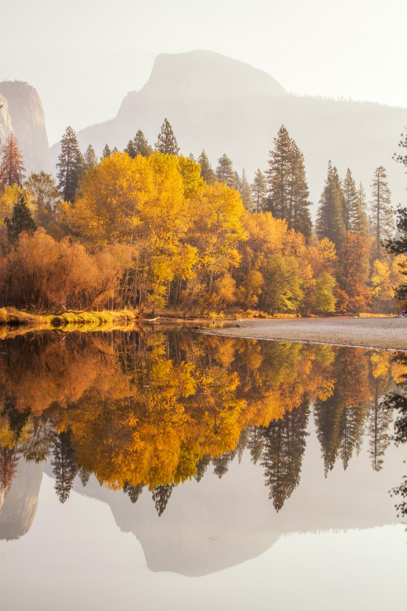 Happy Thanksgiving! We're thankful all year long for America's amazing public lands and the passionate people who care about them. Thank you for sharing your stories with us. Pic of the fall colors @YosemiteNPS by Gary Fua () #California