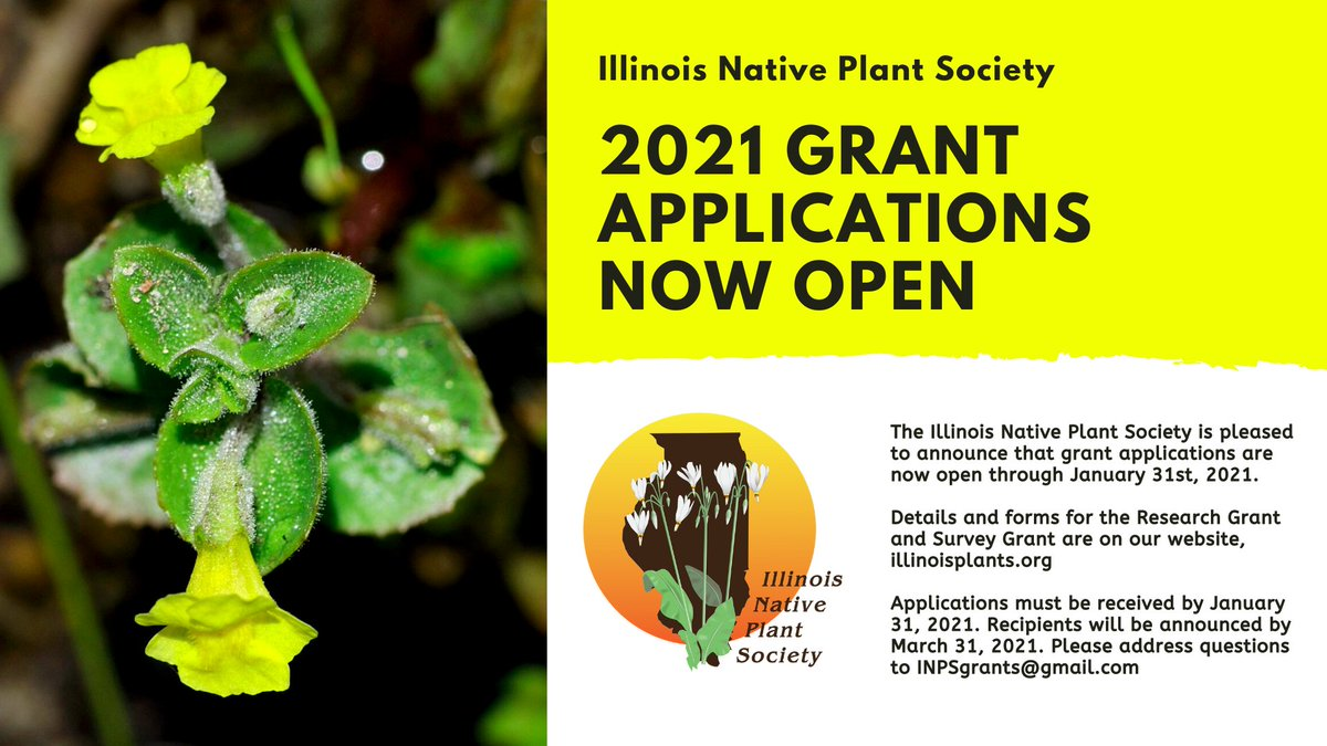 Apply for a research or rare plant survey grant! More details at illinoisplants.org/grants/
