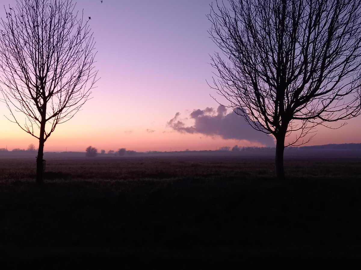 Beautiful drive home this evening. Oxfordshire looking all misty & gorgeous.
